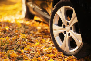 Top Tips for Safer Fall Driving