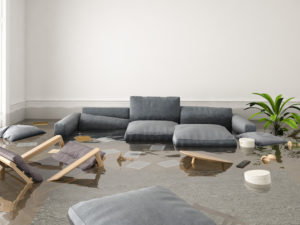 5 Things You Should Do After Your House Floods